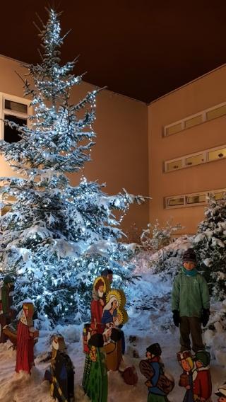 Vánoční strom 2017