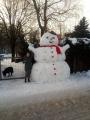 5. A soutěžila ve sněhových stavbách